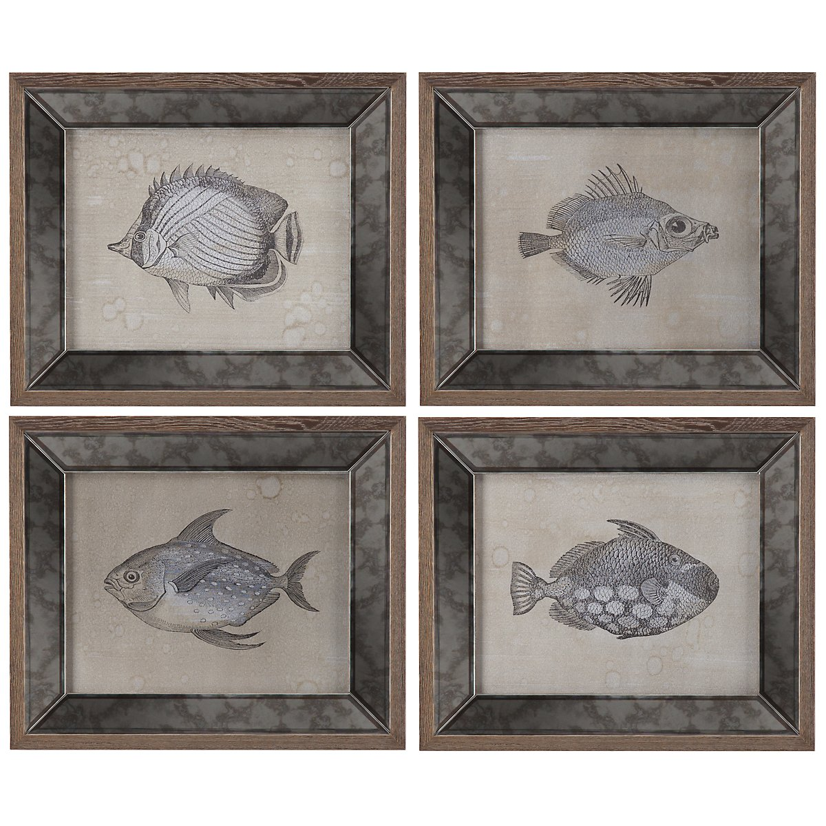 Fish Mirrored Set Of 4 Framed Wall Art