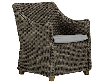 Canyon3 Gray Woven Arm Chair