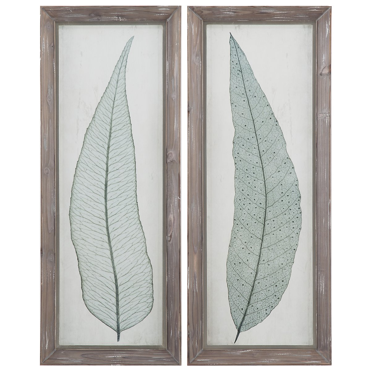 Leaves Set Of 2 Framed Wall Art
