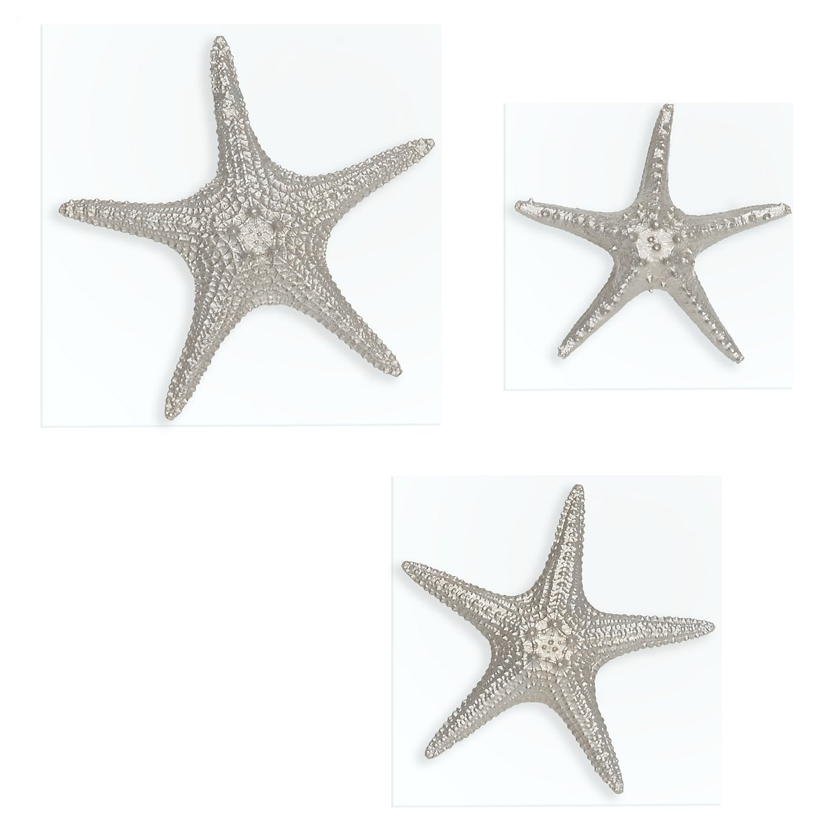 Starfish Silver Set Of 3 Wall Art
