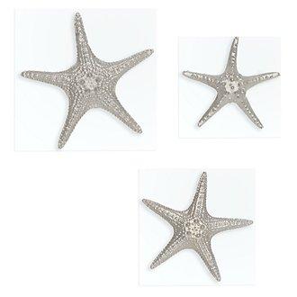 Starfish Silver Set Of 3 Wall Art