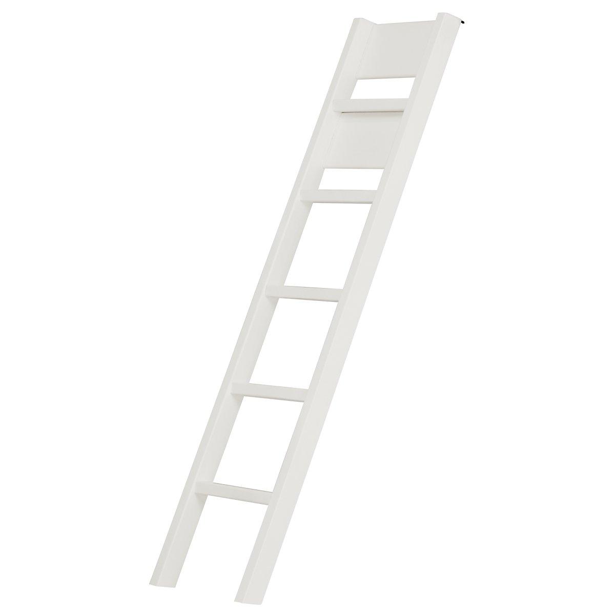 Laguna White Bunk Ladder