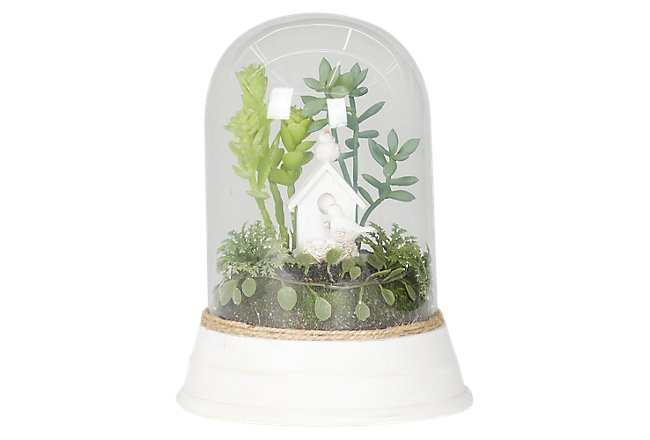Bird Glass Succulent
